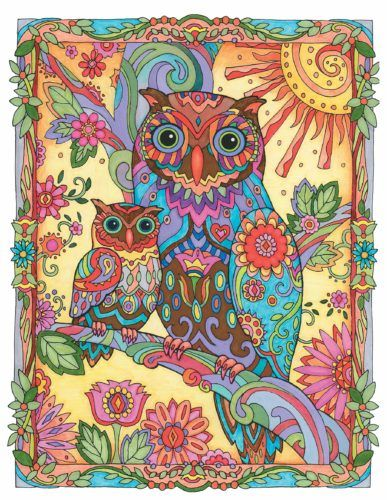 Teaching Science Owls Spg Family Adventure Network Abstract Coloring Pages Manga Coloring Book Toddler Coloring Book