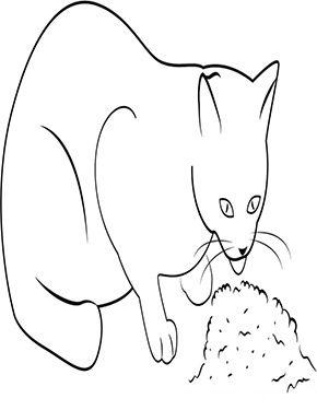 Ausmalbild Katze Frisst Zum Ausmalen Ausmalbilder Malvorlagen