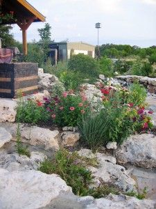 44 best water harvesting images on pinterest gardening acre and info on using rwh for landscaping solutioingenieria Choice Image