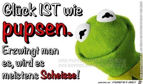 funny picture # funny pictures   - Sprüche - #Funny #picture #Pictures #sprüche