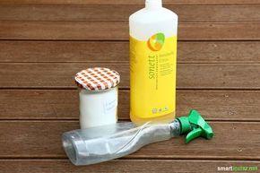 Duschkabinen Spray Okologisch Und Preiswert Selber Machen