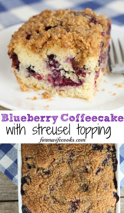 Blueberry Coffeecake with Streusel Topping - The Farmwife Cooks