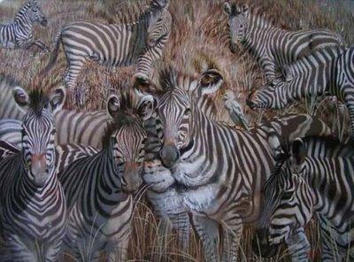 Wenn Du das Bild lang genug anstarrst, siehst Du einen Löwen unter den Zebras.