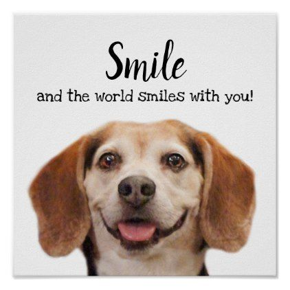Cute Dog Smiling Photo Smile Quote Beagle Poster Zazzle Com In