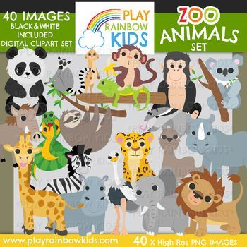 This 40 Image Clipart Set Is Packed With A Huge Variety Of Fun And Adorable Zoo Animals Ready To Use In Your Classroom D Clip Art Animal Clipart Theme Activity