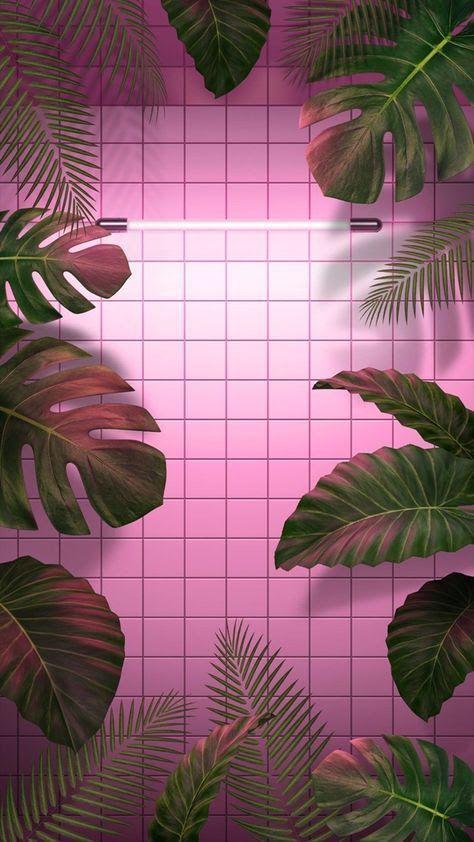 Tropical Mood Hintergrundbilder Tumblr Iphone Hintegrunde Rosa Tapete