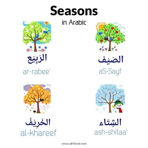 Seasons In Arabic Learning Arabic Interactive Learning Preschool Activities