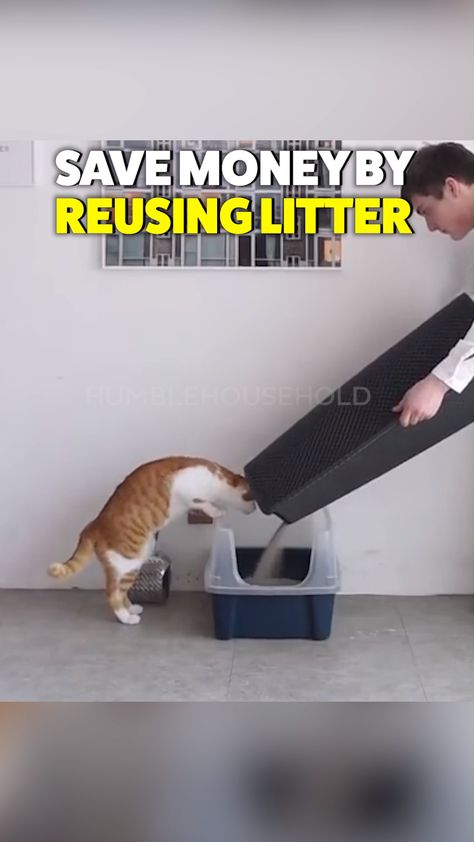 The revolutionary Kitty Litter Catcher is the doormat to your cats' litter box. Every time they step out of their litter box the rubber design cleans their feet and traps it for good. Reuse your kitty litter by dumping it back in after it's caught in the Kitty Litter Catcher, this will end up saving you hundreds of dollars per year!