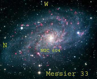 Messier 33 Triangulum Galaxy Is A Face On Spiral Galaxy 50 000 Ly In Diameter Third Largest In The Local Triangulum Galaxy Spiral Galaxy Andromeda Galaxy
