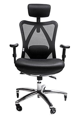 Sleekform Ergonomic Adjustable Office Chair With Lumbar Support
