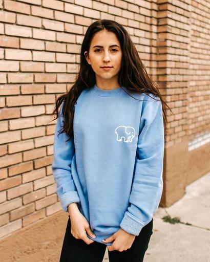 Light Blue Crew Neck Sweatshirt Blue Sweatshirt Outfit Light Blue Sweatshirt Sweatshirts