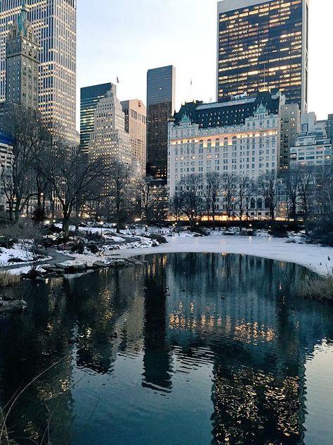 New York City Feelings - The Plaza by @centralpark_nyc #NYC
