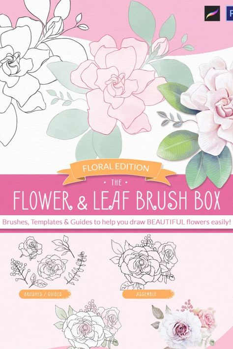 Procreate Flower & Leaf Brush Box