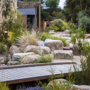 Drought Tolerant Plants Grass Kangaroo Paw Australia