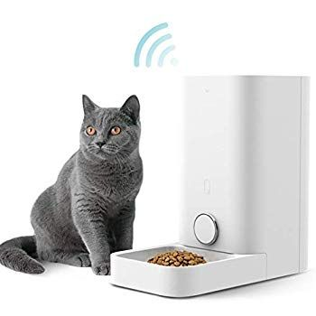 Petkit Smart Feed Automatic Cat Feeder Wi Fi Enabled Pet Feeder For Cat And Small Dog Smartphone App For Ios And A In 2020 Pet Feeder Automatic Cat Feeder Cat Feeder