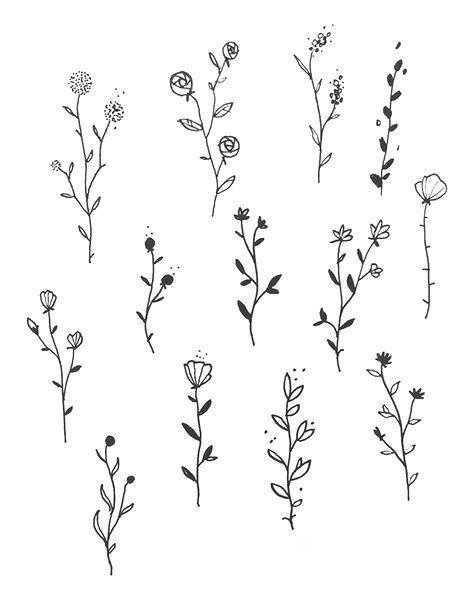 Einfache florale Kritzeleien   Wie zeichnet man Blumen?  #blumen #einfache #florale #kritzeleien #zeichnet
