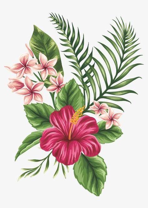 Les Fleurs Peintes à La Main Fleur Les Fleurs Les Fleurs Des Objets Graphiques Fichier PNG et PSD pour le téléchargement libre