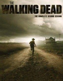 The Walking Dead Saison 10 Streaming Gratuit : walking, saison, streaming, gratuit, Regarder, Télécharger, Gratuitement, Walking, Saison, Streaming, VOSTFR, Serie, Stre…, Saison,, Gratuit