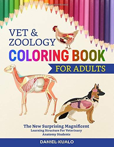 Download Pdf Vet Zoology Coloring Book For Adults The New Surprising Magnificent Learning Structure For Veterinary Anatomy Stud Coloring Books Books Zoology