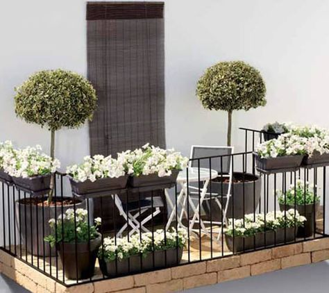 Traditional window boxes are a charming way to space for your your apartment garden.