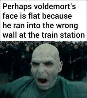 Voldemort S Nose Harry Potter Memes Hilarious Harry Potter Memes Harry Potter Fanfiction