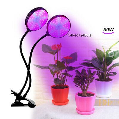 Top 10 Best Led Grow Lights For Indoor Plant Reviews In 2020 Best Led Grow Lights Led Grow Lights Grow Lights