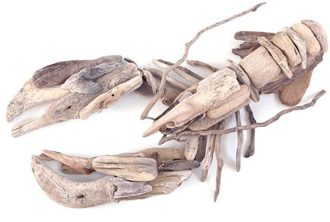 Cornish Driftwood Lobster picture, wood collected from Constantine, Boobys, and Treyarnon Bays as well as around Cornwall