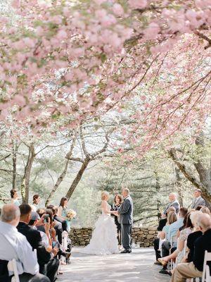 Georgia Wedding With Cherry Blossoms Elizabeth Anne Designs The Wedding Blog Cherry Blossom Wedding Theme Cherry Blossom Wedding Dress Cherry Blossom Wedding