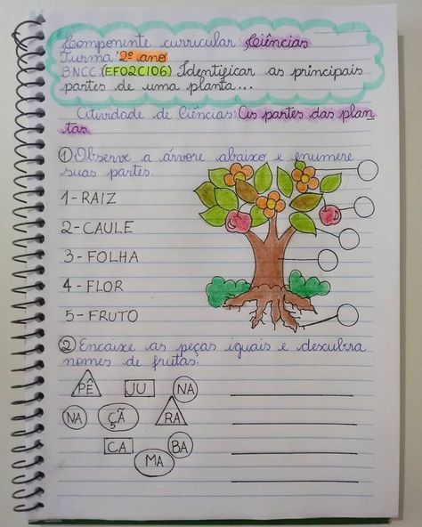 """@pedagogia Da M.a.h No Instagram: """"atividade Complementar"""