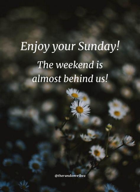 Enjoy your Sunday! The weekend is almost behind us! #Sundaymorningwishes #Morningwishesquotes #Goodmorningwish #Beautifulmorningwishes #Beautifulsundaymorningquotes #Sundayquotes #Sundaymorningquotes #Sundaysayings #Goodmorningquotes #Morningquotes #Goodmorningsunday Happysundayquotes #Weekendquotes #Goodmorningsayings #Morningimages #Morningpictures #Refreshingquotes #Awesomequotes #Positiveenergy #Inspirationalmorningquotes #Inspirationalquotes #Dailyquotes #Everydayquotes #Instaquotes