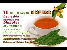 diabetes de té de hoja de níspero