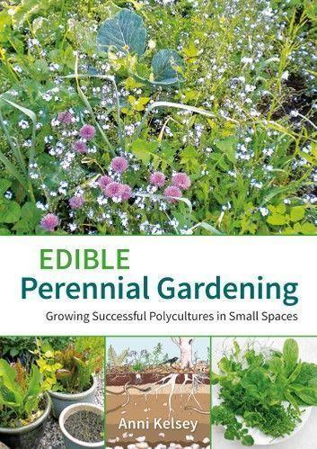 Stauden Essbarer Behalter Gartenarbeit Behalter Essbar Garten Stauden Behalter In 2020 Perennial Garden Hardy Perennials Long Blooming Perennials