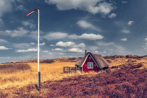 Kleines Sommerhaus (Nymindegab), Dänemark, Flagge, Nordsee, Schilf, Wolken, Jütland