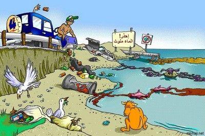 تلوث المياه مصادره مخاطره مكافحته وعلاجه شبكة المعرفة البيئية المصرية Water Pollution Water Pollution Ppt Pollution