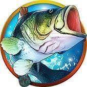 Fishing Clash Gift Codes Fish Clash Games Coding