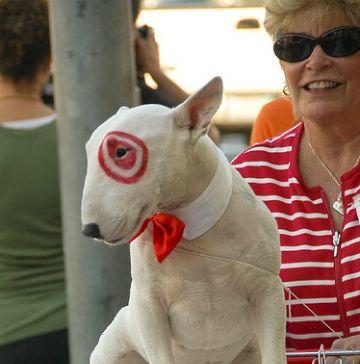 dog halloween costume diy, bullseye, target dog | Funny Dog ...