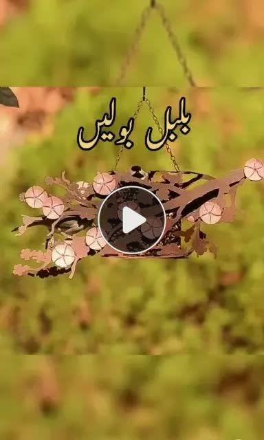 Pin By Khanqah Sarwari Qadri On Tik Tok Videos All Disney Princesses Add Music Instagram