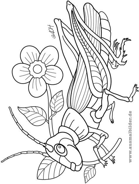malvorlagen insekten queen - tiffanylovesbooks
