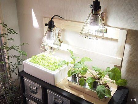 Led 水耕栽培 自作 Diy おしゃれ インテリア 電球 照明 植物育成