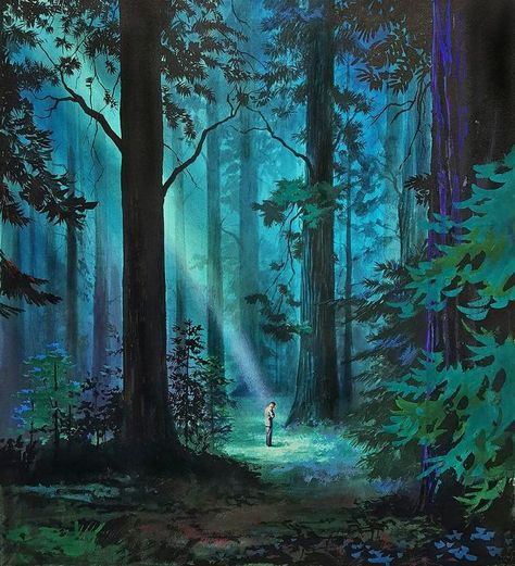 Hector Garrido A ray of light in the forest