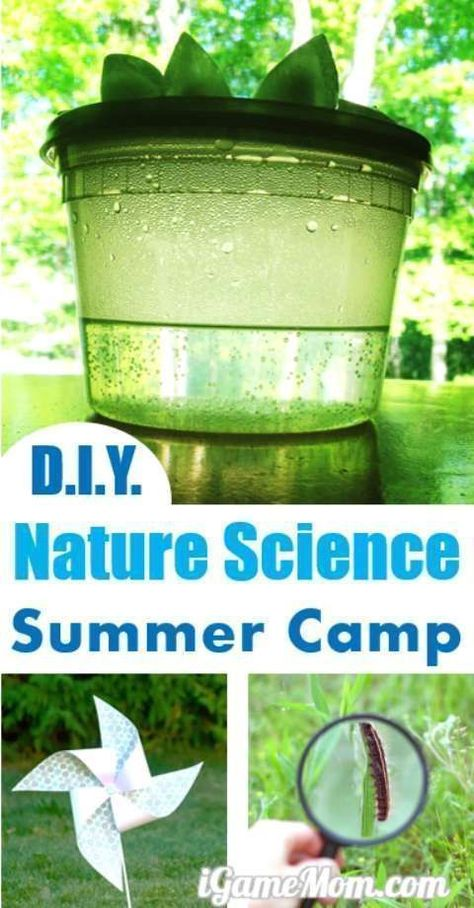 DIY nature science summer camp at home with hands on science activities, for kids preschool to school age. Explore science and enjoy outdoor. Five nature science camp themes ideas for 5 days or 5 weeks. Rain, Wind, Insect, Flower, Sand