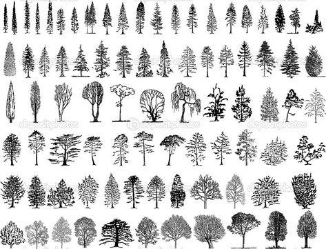 silhouettes d'arbre — Vecteur #1998223