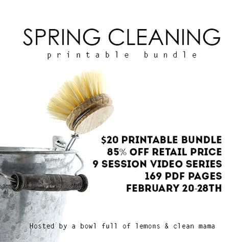 Check out this great Spring Cleaning Bundle!  Everything you need to get a jump start on your decluttering and cleaning so you can enjoy spring when it arrives!  Only for a limited time so get yours before it's gone!