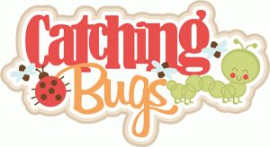Silhouette Design Store - View Design #61656: catching bugs title