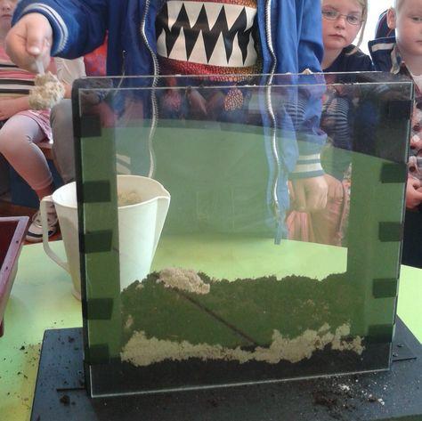 (Regen-) wormenbak maken: aarde, zand, aarde etc. en afsluiten met koffieprut en verse bladeren. Regenwormen verzamelen en de dagen erna zien hoe ze gangen graven.