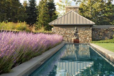 Zen Lap Pool,  ADORE ADORE ADORE.....!