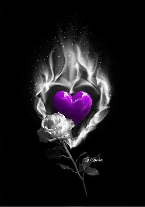 Lila Herz. Ich hoffe, dir geht's gut Daizo💗💞💞 -  - #Daizo #dir #geht39s #gut #Herz #hoffe #ich #lila