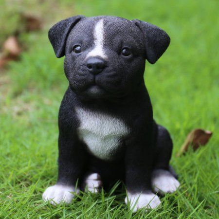 Staffordshire Pitbull Puppy Statue Black Puppies Pitbull