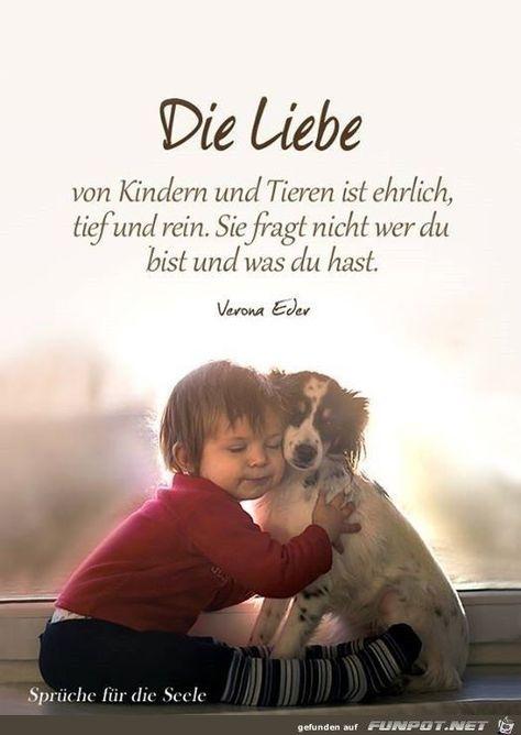 Die Liebe von Kindern und Tieren ist ehrlich, tief und rein. Sie fragt nicht, we... - #die #ehrlich #fragt #ist #Kindern #Liebe #nicht #rein #Sie #tief #Tieren #und #von