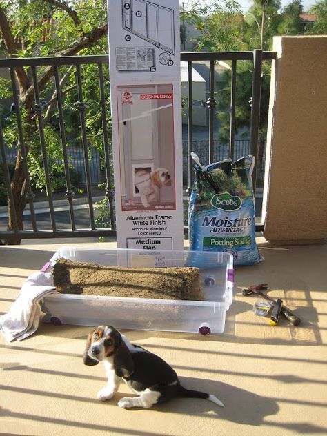 Apartment Living How To Make A Grass Patch On Your Balcony Patio For Your Dog Dog Potty Patch Apartment Dogs Dog Area